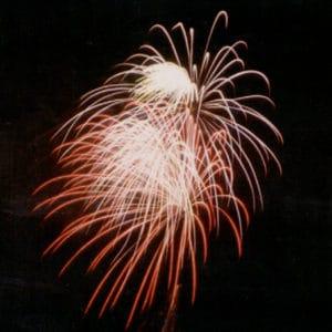 New Year Ditsvit